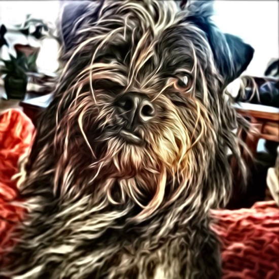 My wee terrier thru SuperPhoto app for smart phones