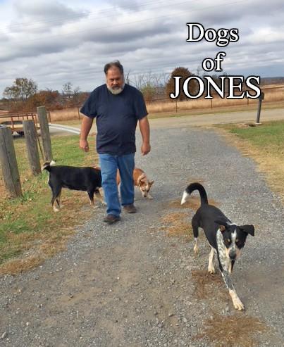Farm dogs in rural NE Oklahoma