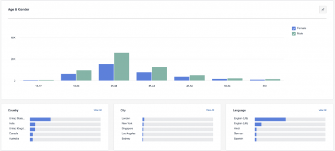 Facebook Analytics Demographics