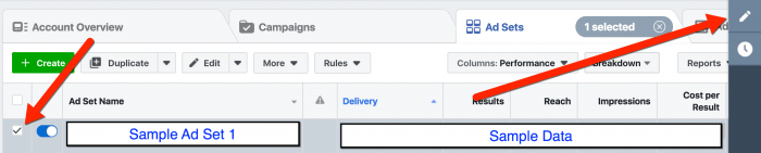 Facebook Ads Manager - Select Ad Set and Edit