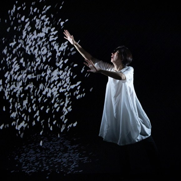 From the show Scored in Silence, with projection mapped doves on Hologauzeapp