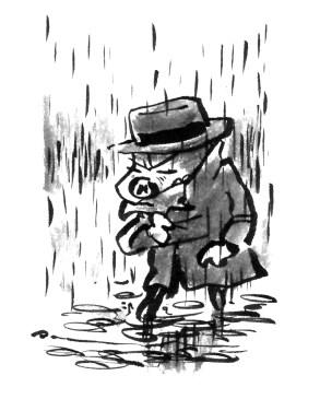 sommer regn