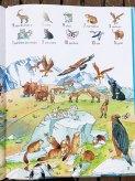 Livre sur les animaux sauvages