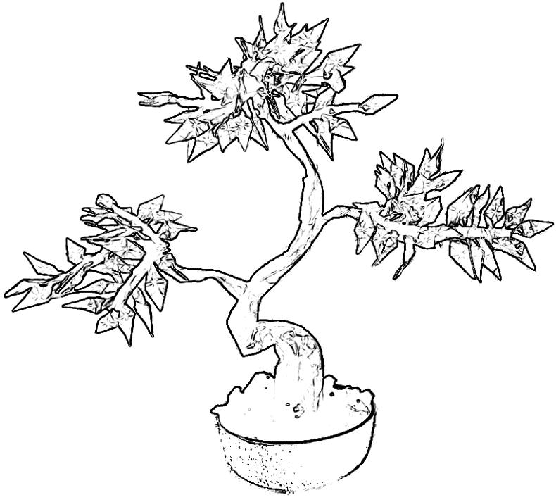 Japanese Bonsai Tree Coloring Pages