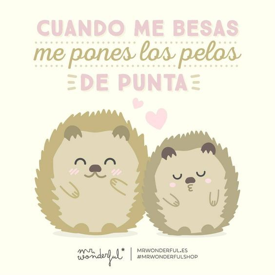 frases-mr-wonderful-bodas-4