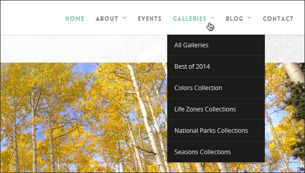 menus de paginas web