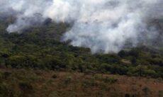 Amazônia tem crescimento de 28% no número de queimadas em julho