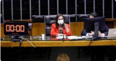 DERROTA DE BOLSONARO NA CÂMARA - ATÉ O MOMENTO, 04 VETOS DERRUBADOS
