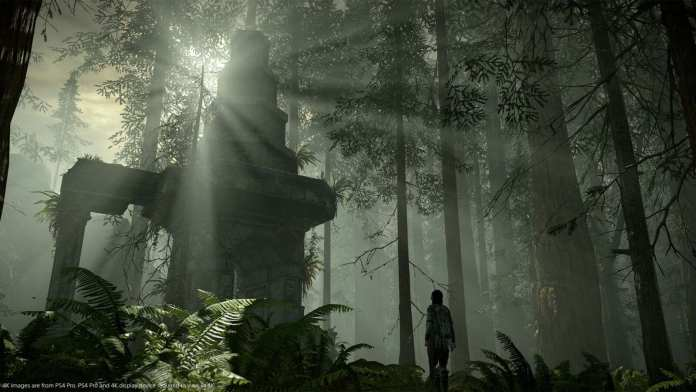 Shadow of the Colossus PS4 Mudanças