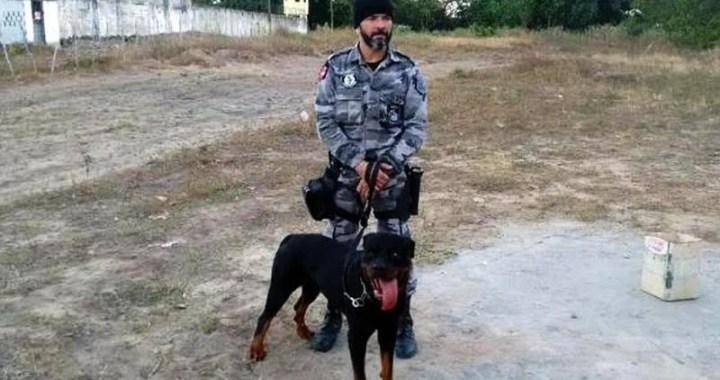 Sistema prisional paraibano passa a utilizar cães nas operações de segurança