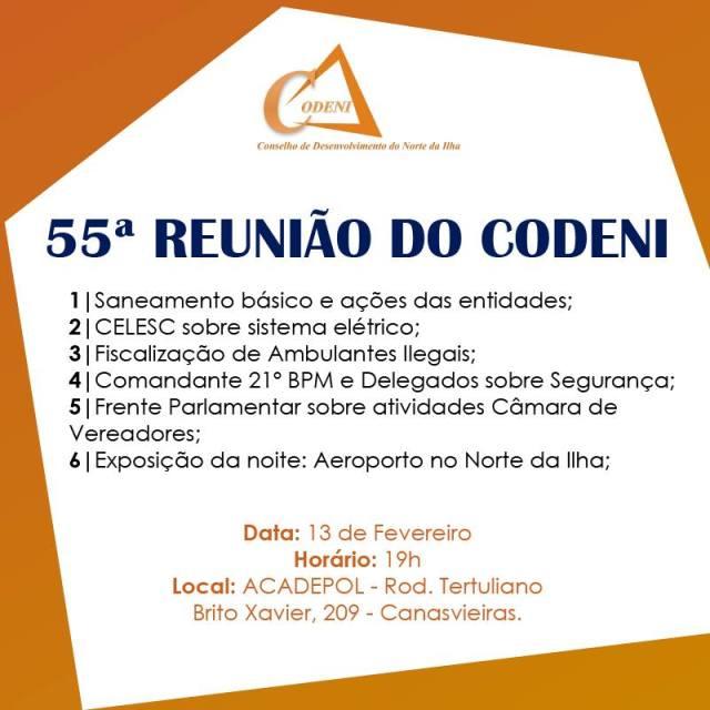 Reunião do Codeni debaterá segurança e implantação de aeroporto no Norte da Ilha