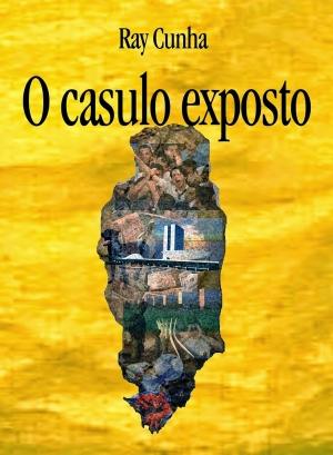 O casulo exposto - Capa Andre Cerino - Divulgacao