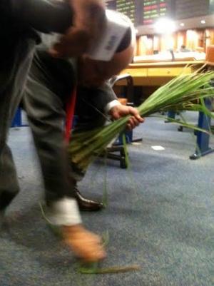 Vereador Djalma Araújo (SDD) recolhe folhas de erva cidreira que caíram no plenário. Paço Municipal gastou R$ 37,5 mil com 5 mil pacotes de chá . Foto: Marcello Dantas/Jornal Opção Online