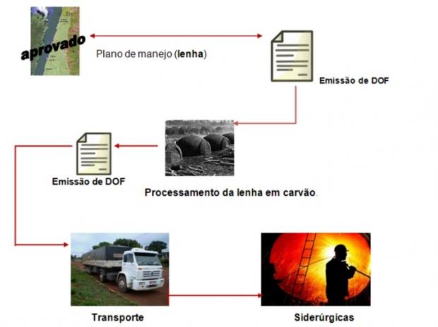Fluxograma sobre falsificação do DOF | Reprodução PF