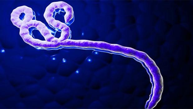 Em meio à pandemia de coronavírus, Congo registra surto de ebola