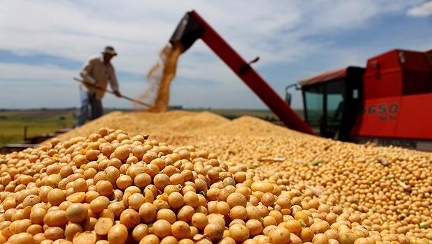 Marina presidente é uma ameaça ao agronegócio goiano?