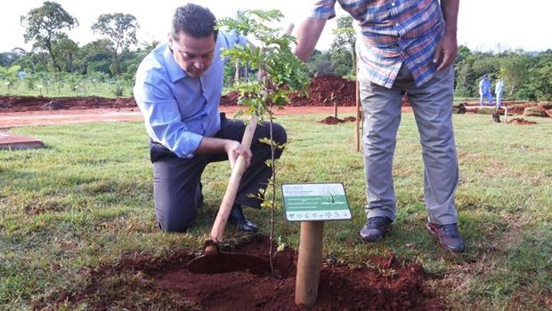 Governador planta mudas de espécies ameaçadas na nova sede do TCE