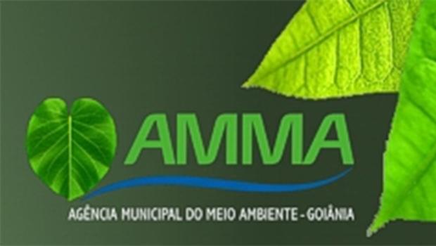 Base de Paulo Garcia propõe mudanças na Amma
