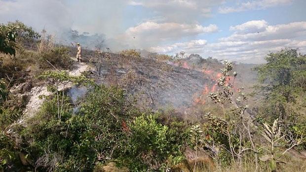 Último grande incêndio atingiu Parque dos Pireneus há cinco anos