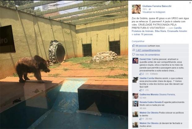 urso-OK