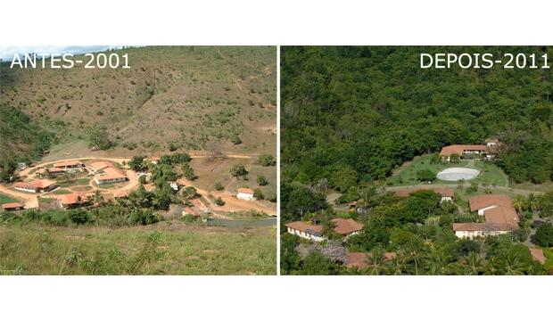 Comparação entre áreas desmatadas em dez anos | Divulgação