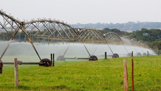 Goiás terá escritório regional de companhia referência em agricultura irrigada
