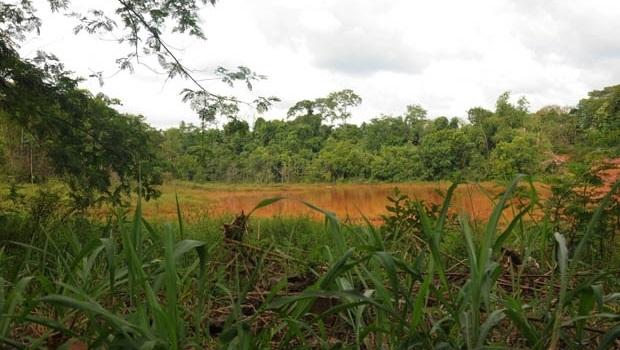 Situação de lagoa natural próxima à nascente do Córrego assusta | Foto: Renan Accioly