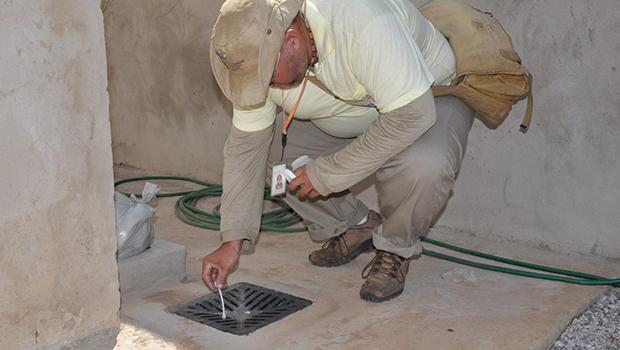 Para evitar surto de dengue, agentes seguem trabalhando durante quarentena