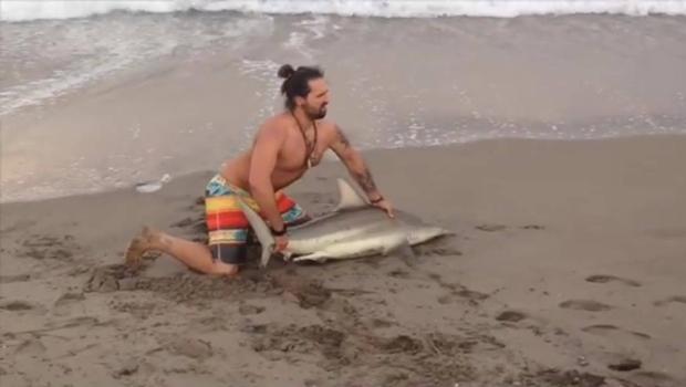 Internautas criticam pescador que tirou um tubarão do mar para tirar fotos