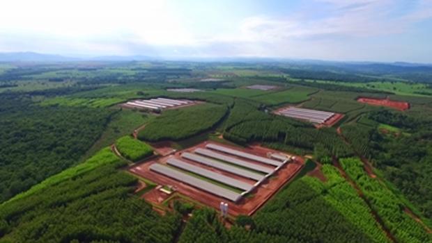 Super Frango inaugura expansão em São Francisco de Goiás