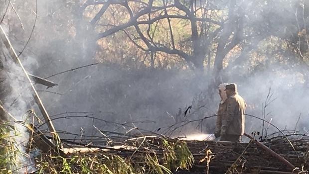 Equipe controlou o fogo antes que atingisse a parte de visitação do Zoológico | Foto: Repreodução / Secom