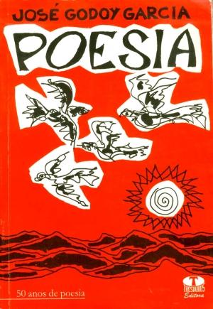 José Godoy Garcia capa do livro 1