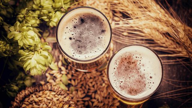 UFG realiza curso de produção de cerveja artesanal