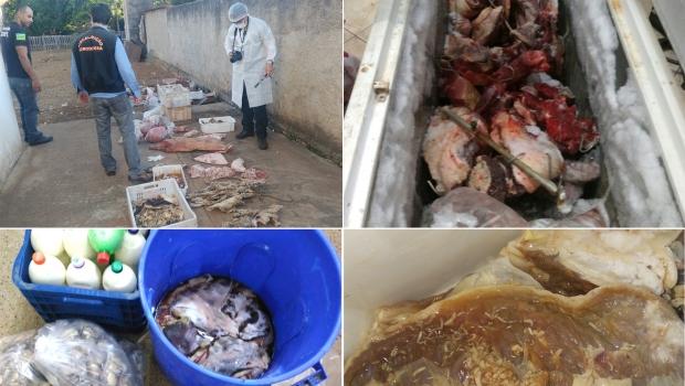 MP-GO apreende mais de 1 tonelada de carne estragada em 4 cidades do interior