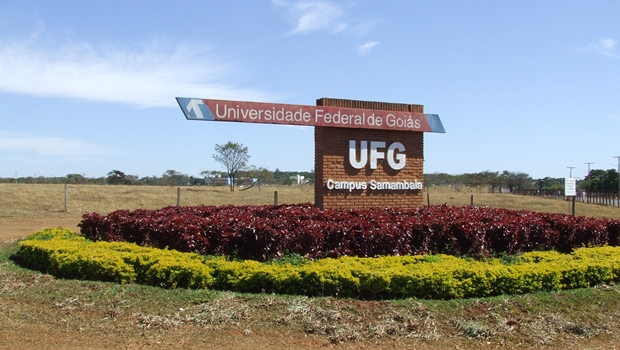 Confira quais as melhores e as piores universidades e faculdades de Goiás