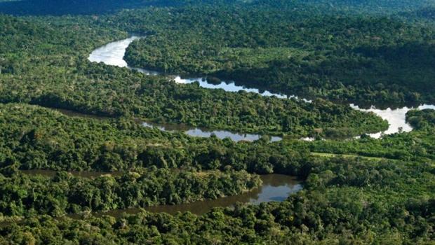 Justiça revoga decreto federal que acabava com reserva na Floresta Amazônica