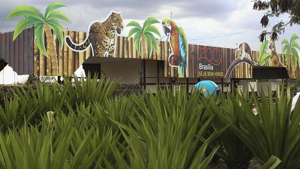 Zoológico de Brasília comemora 60 anos