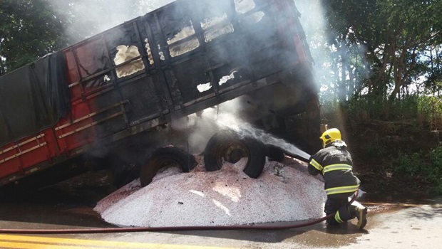 Caminhão carregado de soja pega fogo na GO-330 em Ipameri