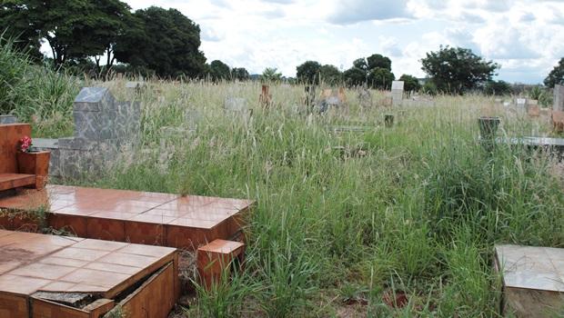 Mato alto toma conta de cemitério público em Goiânia