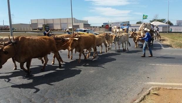 Comitivas de romeiros dificultam trânsito na BR-153 em Goiás