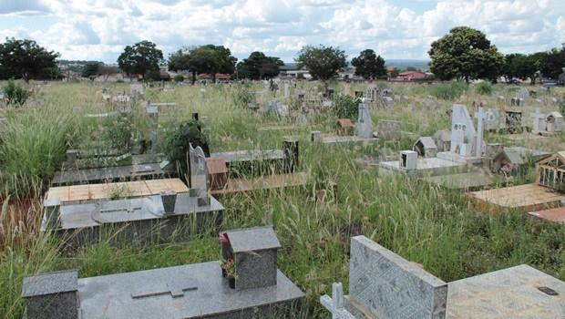 Cemitérios de Goiânia funcionam de forma irregular sem licença ambiental