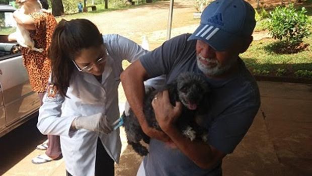 Vacina contra raiva animal segue disponível em 15 postos de Goiânia