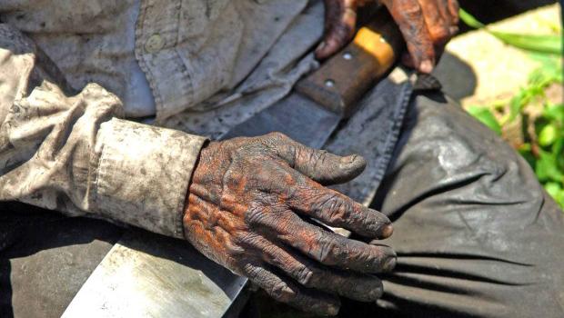 Nos últimos cinco anos, MPT recebe mais de 6 mil denúncias de trabalho análogo a escravidão e tráfico de pessoas