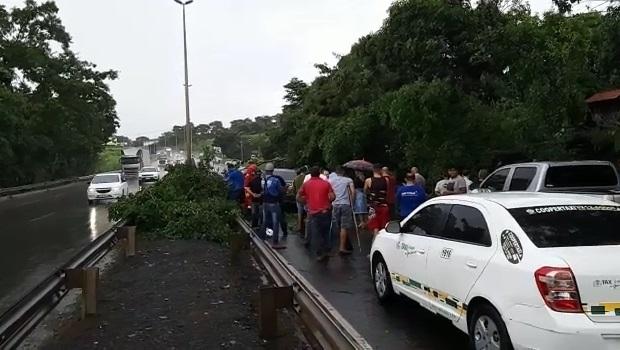 BR 153 é interditada em trecho entre Goiânia e Aparecida devido à queda de árvore
