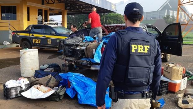 Três homens são presos transportando mais de cem quilos de peixe na BR 060