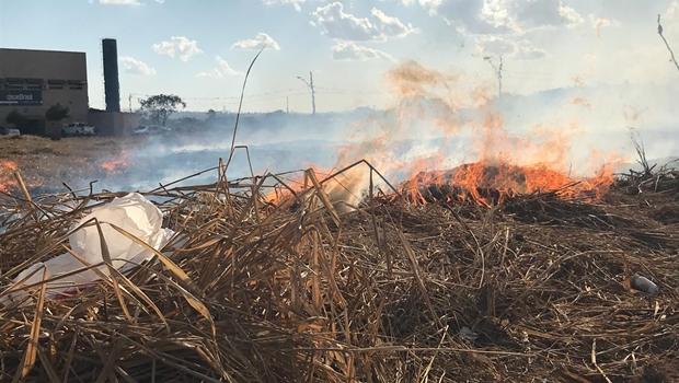 Em Goiás, número de queimadas em junho de 2019 foi 50% maior que no ano passado