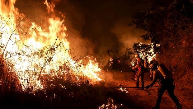 Agropecuária com incêndio é 'tiro no pé' econômico