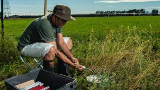 Pesquisador goiano conclui pesquisa sobre gases do efeito estufa na Nova Zelândia