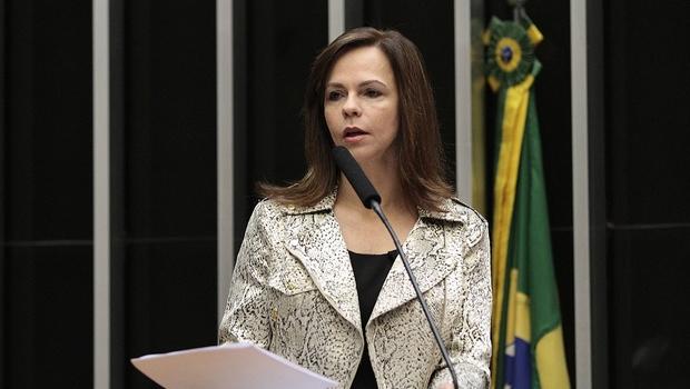 Dorinha integra Frente Parlamentar em Defesa do Patrimônio Histórico