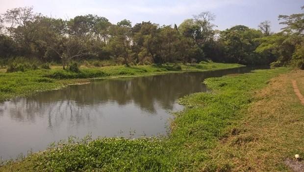 Governo define novas regras para consumo de água em irrigações e indústrias